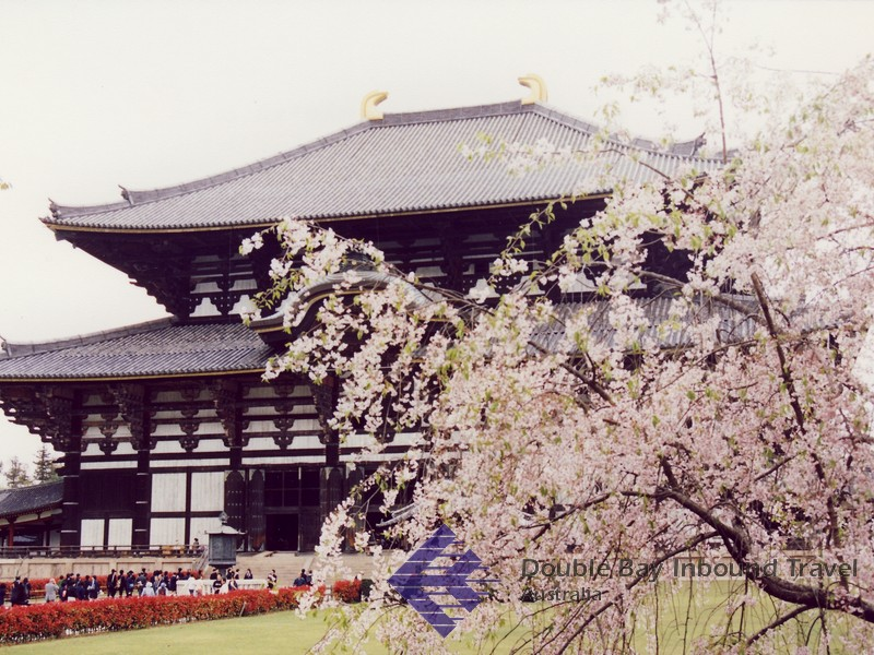 japanese art infused into the temple of todaiji , which propelled japan into world war ii the todaiji (great east temple) setting patterns for japanese art to this day.